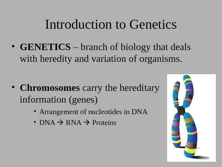 Introduction to Genetics • GENETICS – branch of biology that deals with heredity and