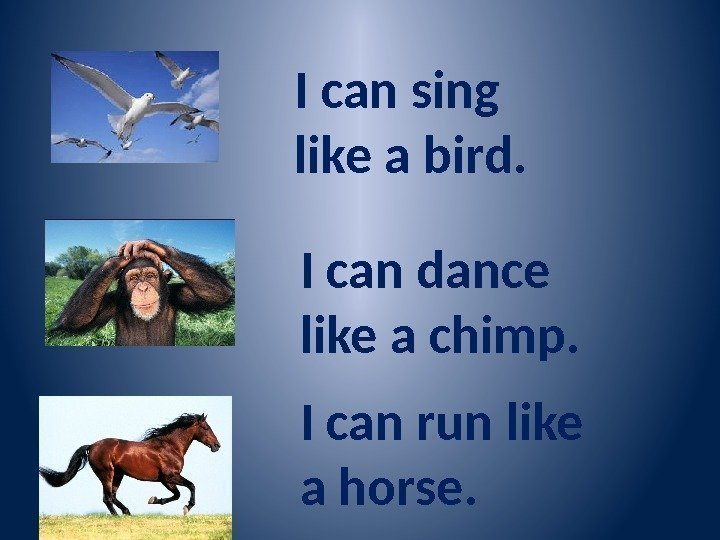 I can sing like a bird. I can dance like a chimp. I can