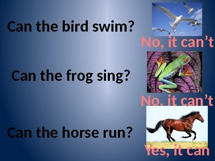 Can the bird swim? No, it can't Can the frog sing? No, it can't