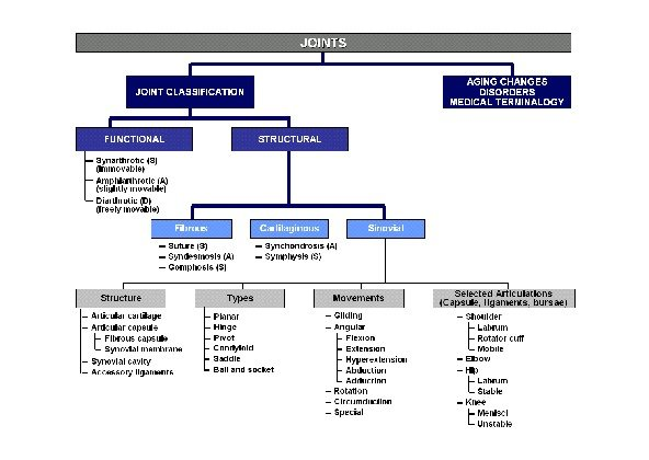 classification of coworkers Occupational safety and health (osh), also commonly referred to as occupational health and safety or with a multi-dimensional classification scheme.