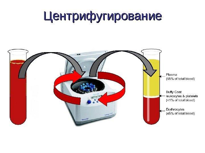 biohimiya-spermalnoy-plazmi
