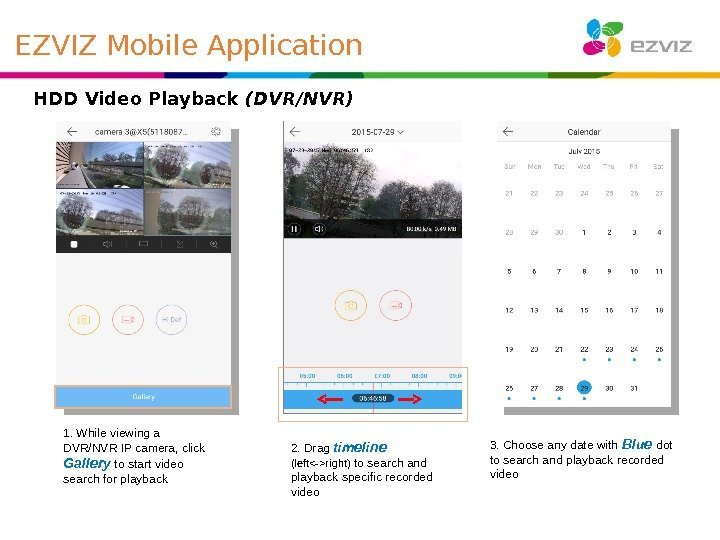 HDD Video Playback (DVR/NVR) 1. While viewing a DVR/NVR IP camera, click Gallery