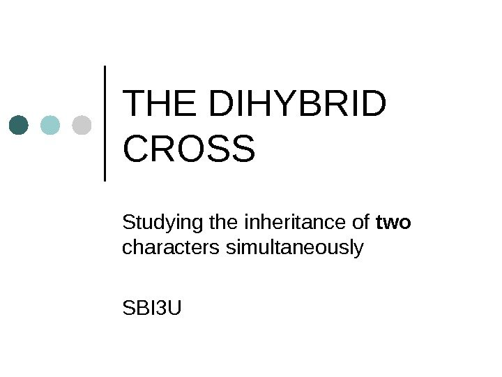 THE DIHYBRID CROSS  Studying the inheritance of two  characters simultaneously  SBI