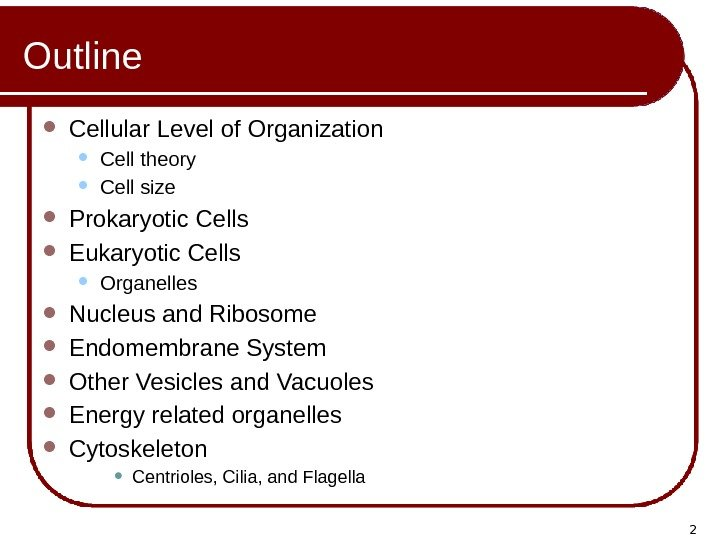2 Outline Cellular Level of Organization Cell theory Cell size Prokaryotic Cells Eukaryotic Cells