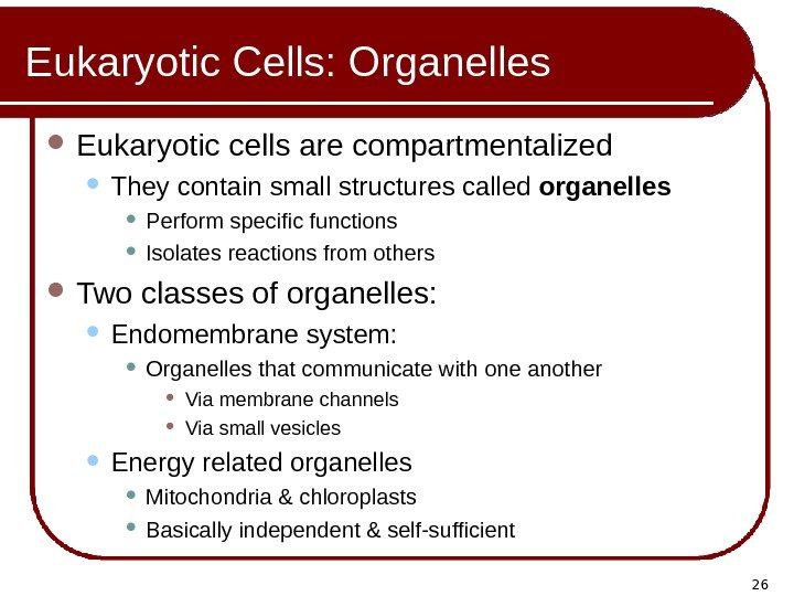 26 Eukaryotic Cells: Organelles Eukaryotic cells are compartmentalized They contain small structures called organelles