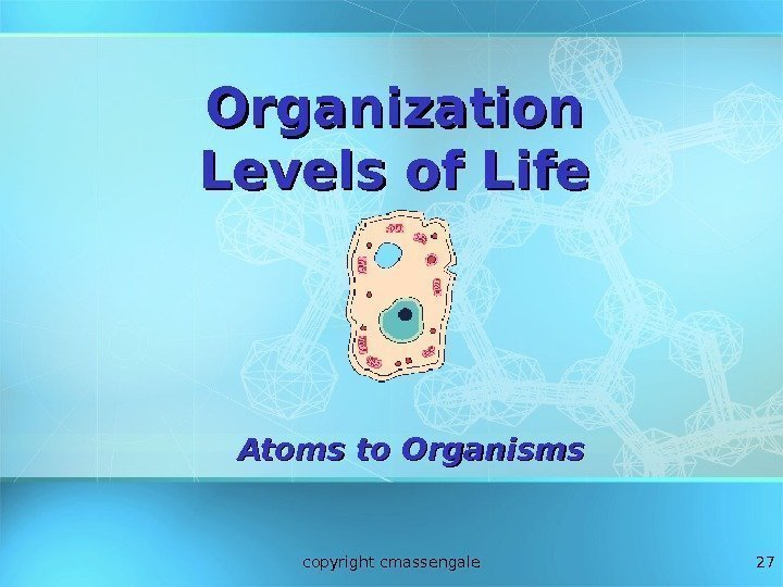 27 Organization Levels of Life Atoms to Organisms copyright cmassengale
