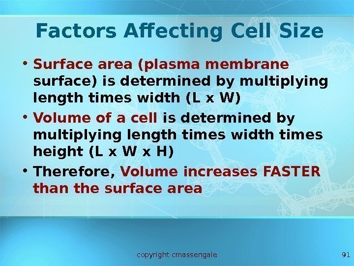 91 Factors Affecting Cell Size • Surface area (plasma membrane  surface) is determined