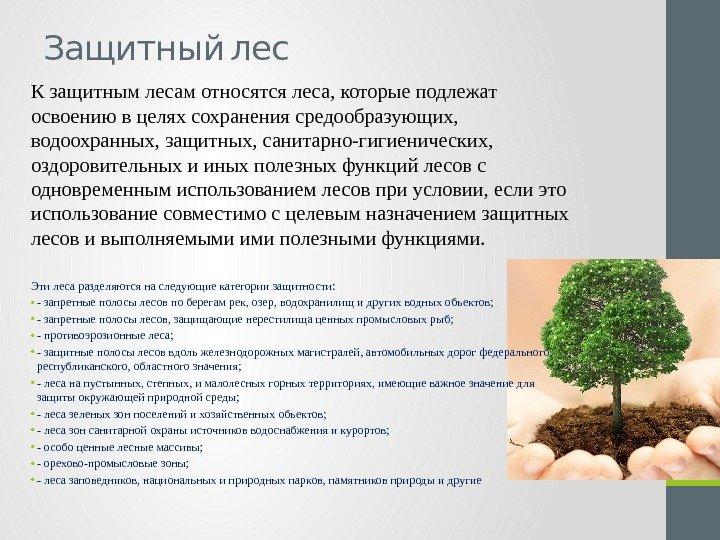 К особо защитным участкам лесов относятся