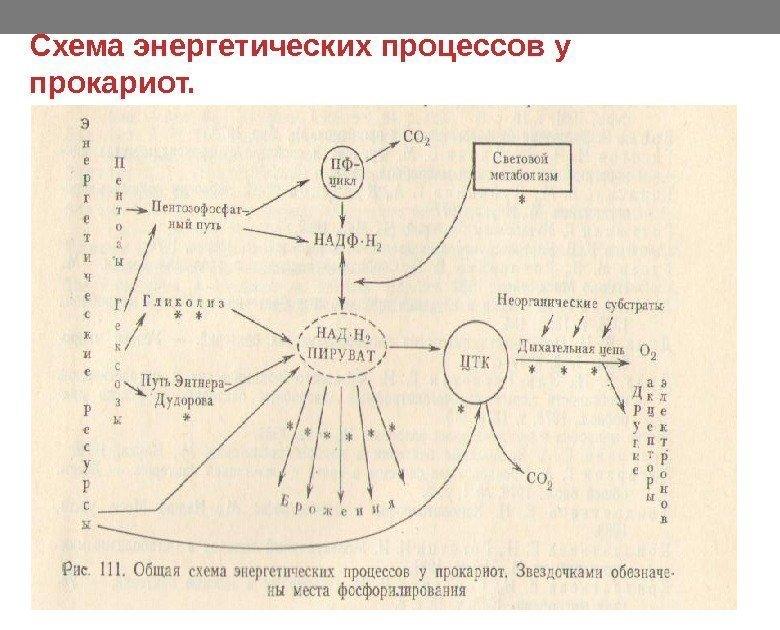 Описание схем энергетических