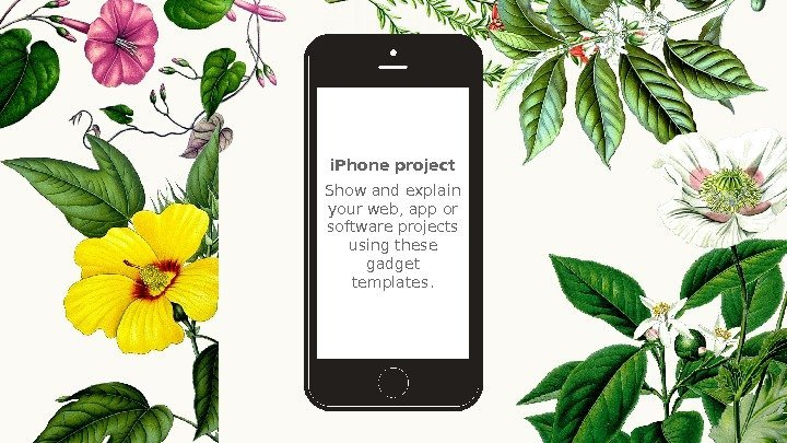 i. Phone project Show and explain your web, app or software projects using these