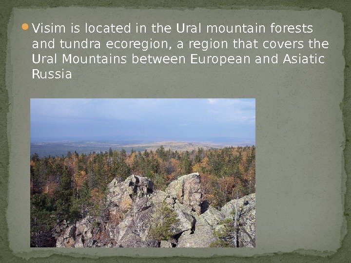 Visim is located in the Ural mountain forests and tundra ecoregion, a region