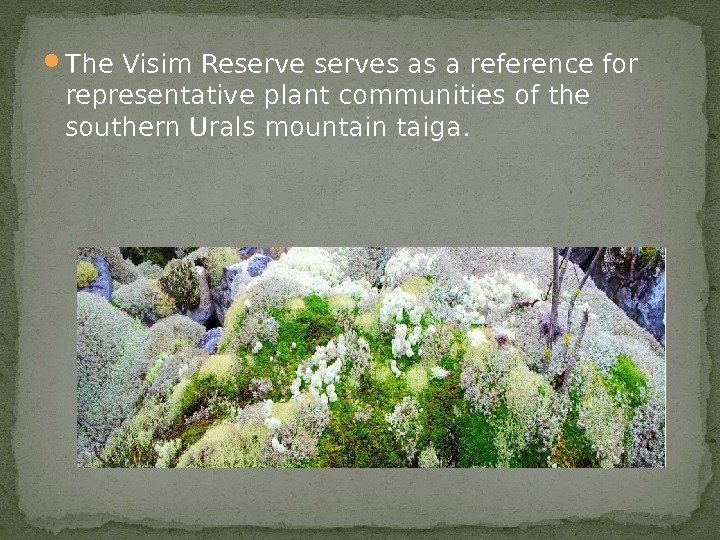 The Visim Reserves as a reference for representative plant communities of the southern