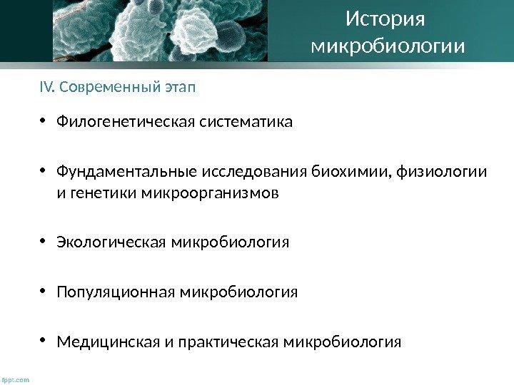 Микробиологии И Вирусология Шпаргалка
