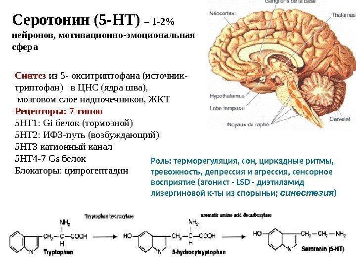assumere serotonina
