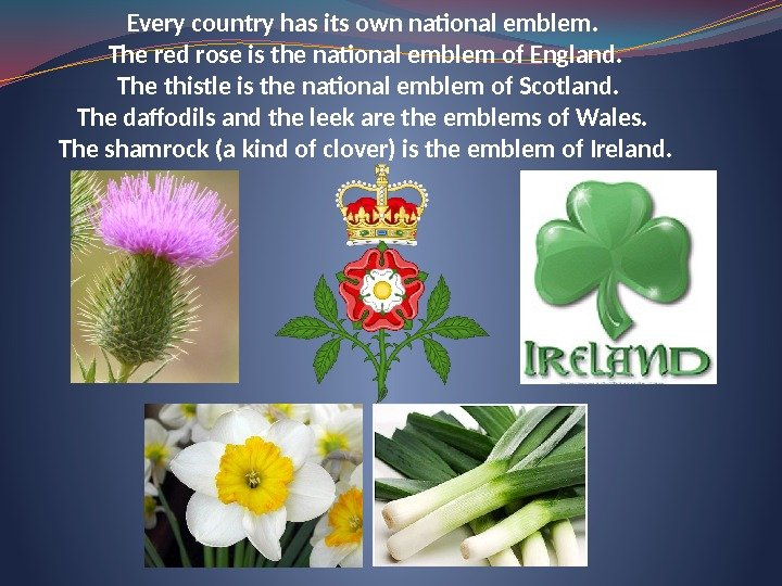 Every country has its own national emblem.  The red rose is the national