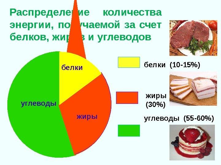 http://present5.com/presentforday2/20170220/lektsia_9_17_obmen_v-v_i_energii_pitanie_images/lektsia_9_17_obmen_v-v_i_energii_pitanie_39.jpg