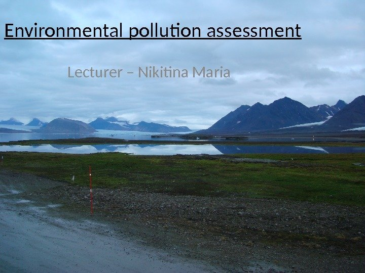 1 Environmental pollution assessment  Lecturer – Nikitina Maria