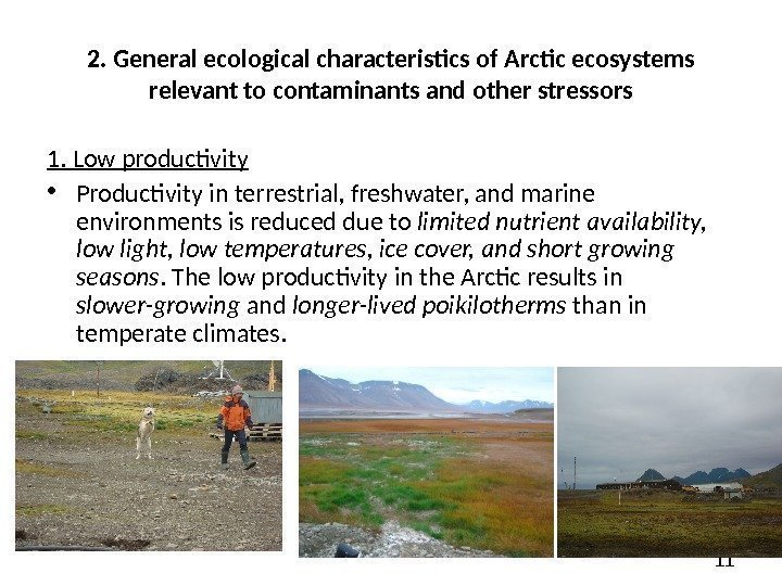 112.  General ecological characteristics of Arctic ecosystems relevant to contaminants and other stressors