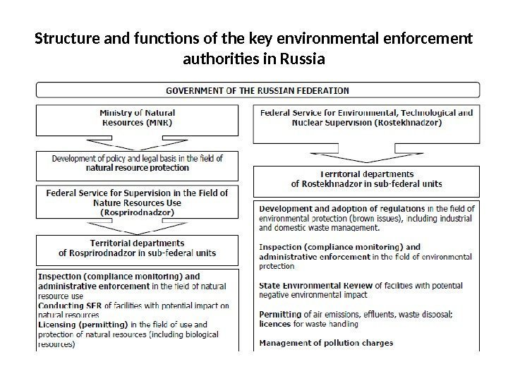 48 Structure and functions of the key environmental enforcement authorities in Russia
