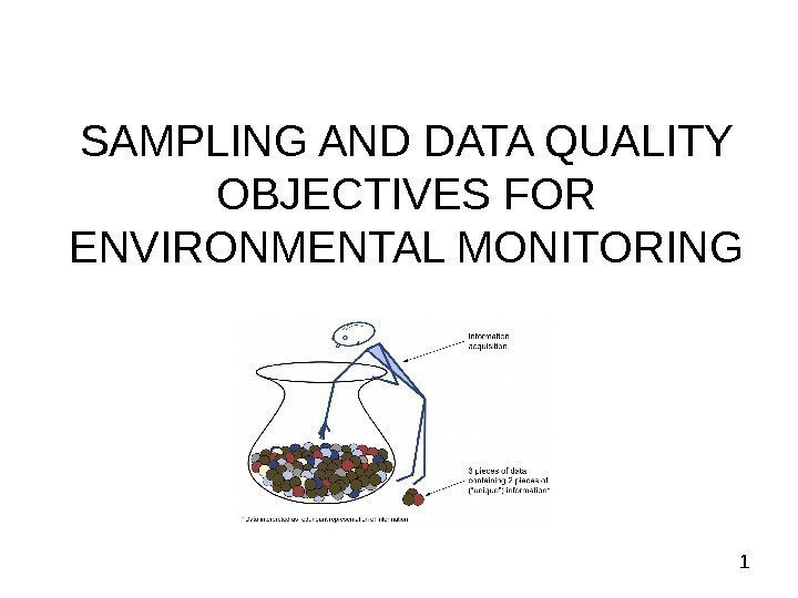 1 SAMPLING AND DATA QUALITY OBJECTIVES FOR ENVIRONMENTAL MONITORING