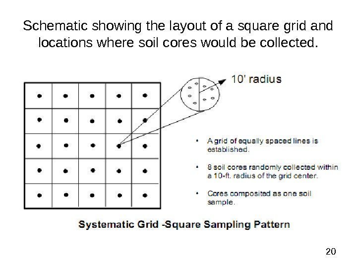 20 Schematic showing the layout of a square grid and locations where soil
