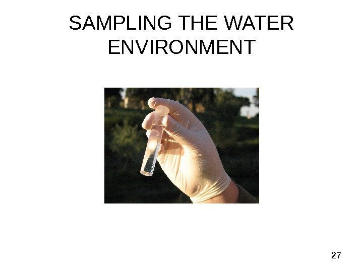 27 SAMPLING THE WATER ENVIRONMENT