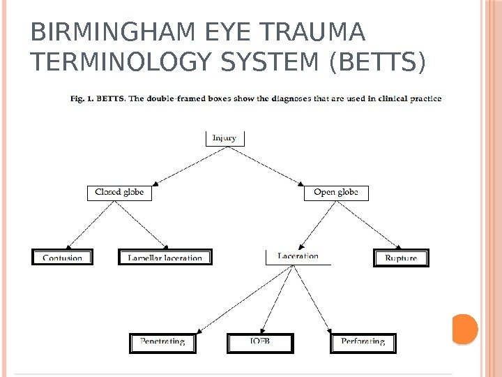 BIRMINGHAM EYE TRAUMA TERMINOLOGY SYSTEM (BETTS)