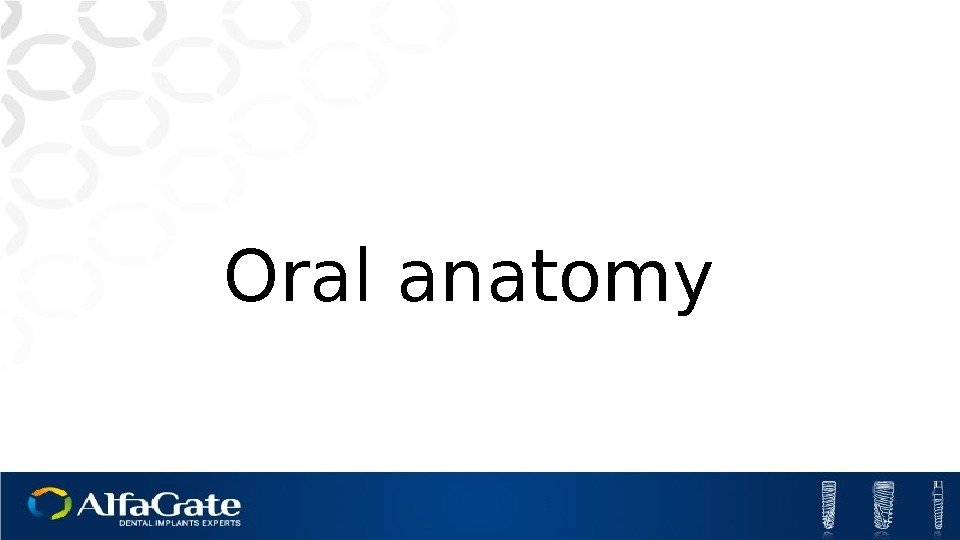 Oral anatomy
