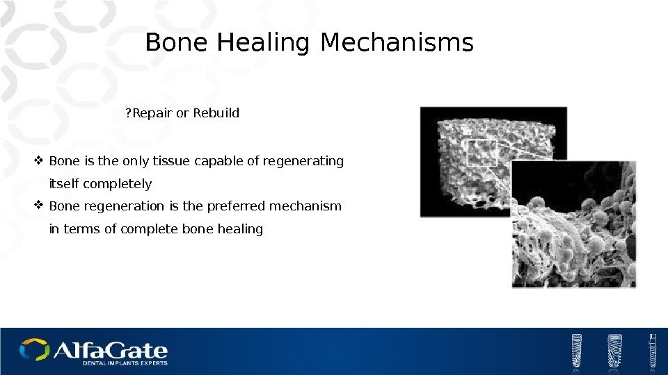 Bone is the only tissue capable of regenerating itself completely Bone regeneration is