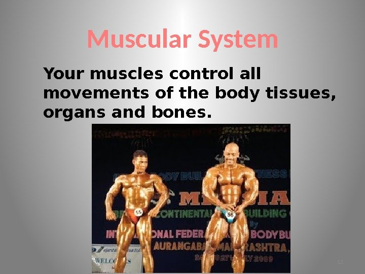 Muscular System Your muscles control all movements of the body tissues,  organs and