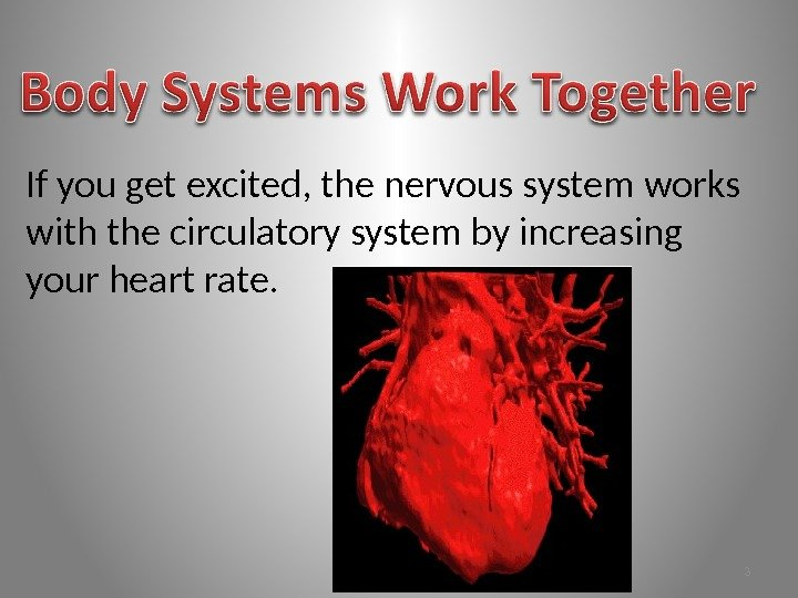 If you get excited, the nervous system works with the circulatory system by increasing