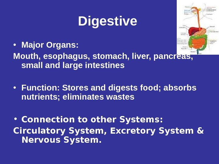 Digestive  • Major Organs: Mouth, esophagus, stomach, liver, pancreas,  small and large