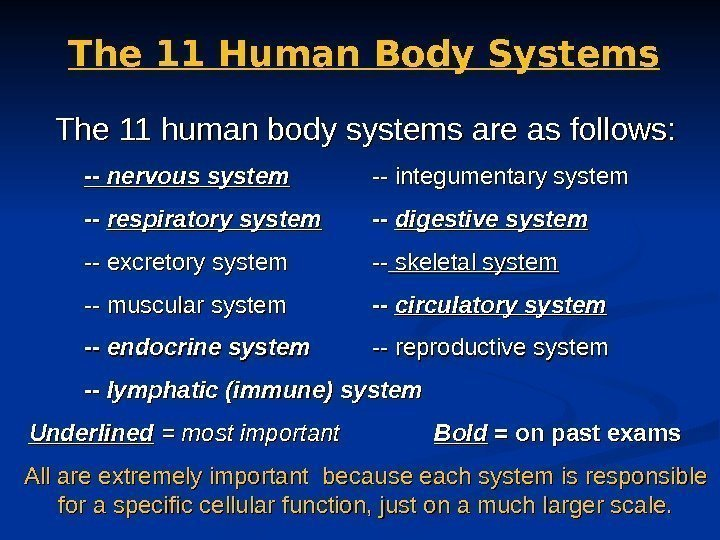 The 11 Human Body Systems The 11 human body systems are as follows: --