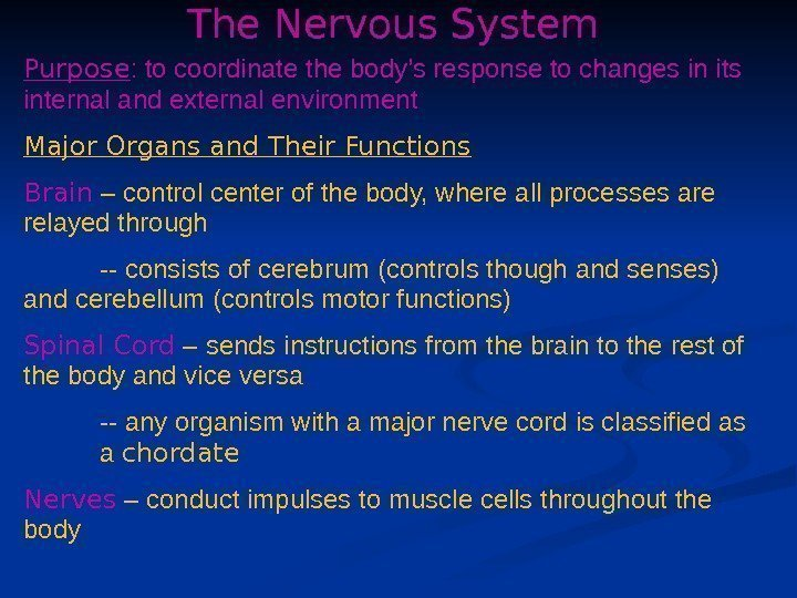 The Nervous System Purpose : to coordinate the body's response to changes in its