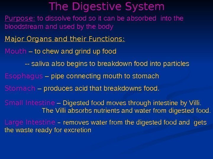 The Digestive System Purpose:  to dissolve food so it can be absorbed into
