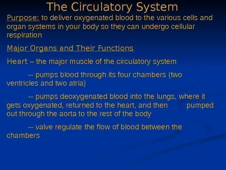 The Circulatory System Purpose:  to deliver oxygenated blood to the various cells and