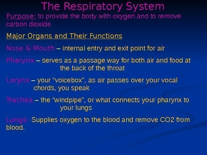 The Respiratory System Purpose:  to provide the body with oxygen and to remove