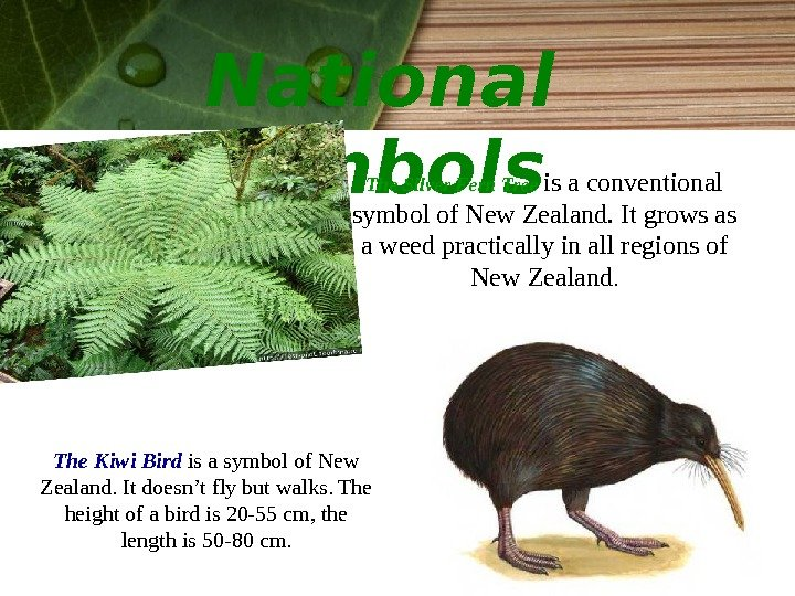 National symbols The Kiwi Bird is a symbol of New Zealand. It doesn't fly