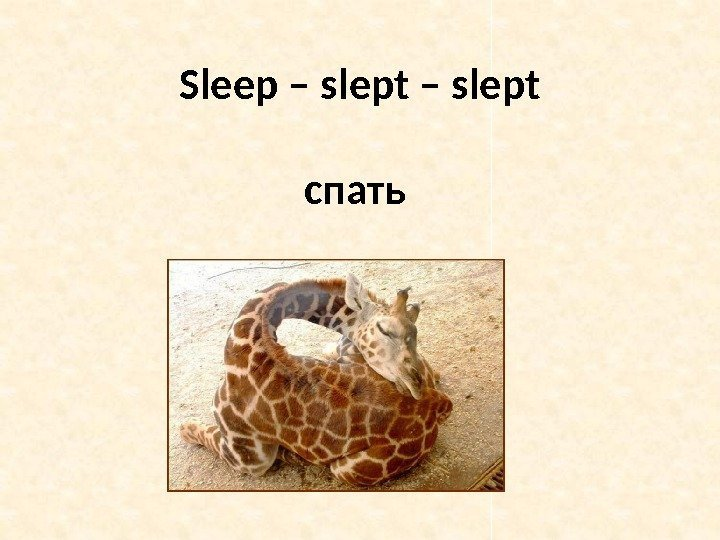 Sleep – slept спать