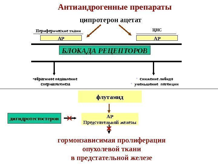 golaya-aziatskaya-devushka