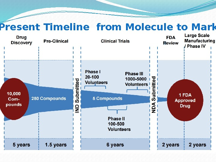 Present Timeline from Molecule to Market