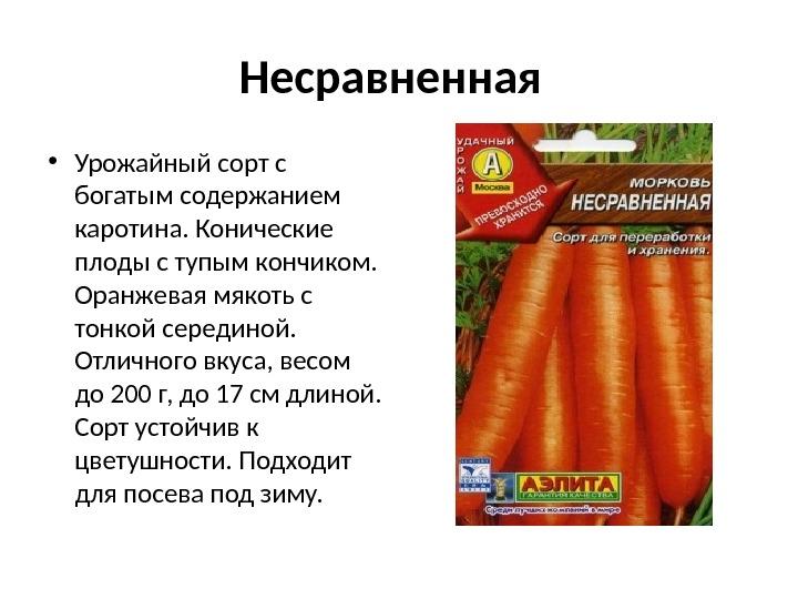 Содержание каротина в сортах моркови