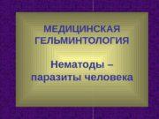 МЕДИЦИНСКАЯ ГЕЛЬМИНТОЛОГИЯ Нематоды – паразиты человека  Тип