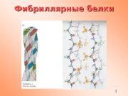 1 Фибриллярные белки  2 Характерные мотивы чередования