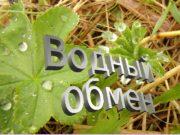 Водный обмен растений 1.  Водная среда объединяет