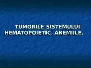 TUMORILE SISTEMULUI HEMATOPOIETIC. ANEMIILE.  Măduva osoasă pioidă