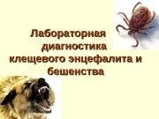 Лабораторная  диагностика клещевого энцефалита и бешенства