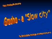 "Introduction (The idea of a ""Slow city"""