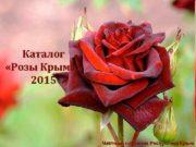 Каталог Розы Крыма 2015 Частный питомник Республика Крым