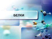 БЕЛКИ Белки или протеины